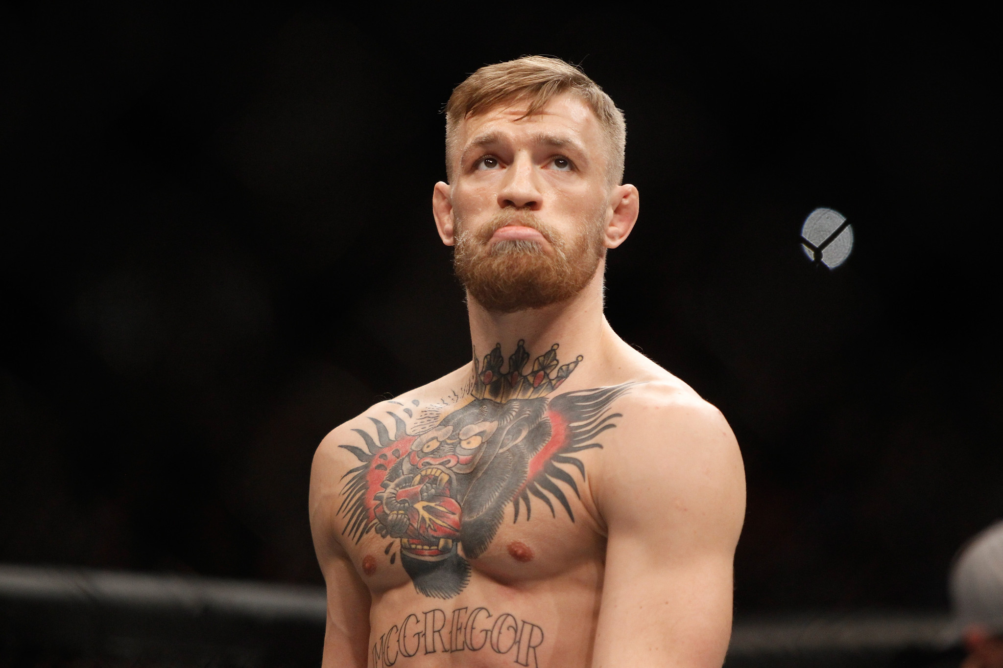 Conor McGregor Background
