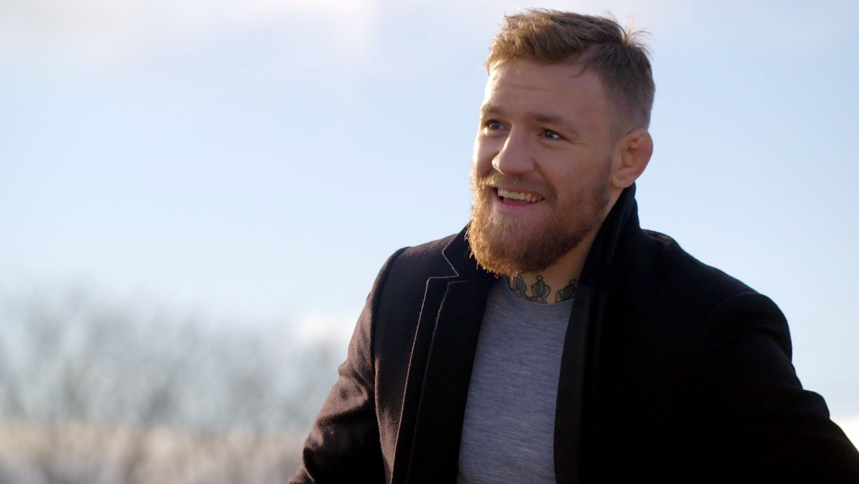 Conor McGregor HD Wallpapers Free Download in High Quality ...
