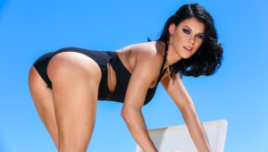 Peta Jensen New Wallpapers