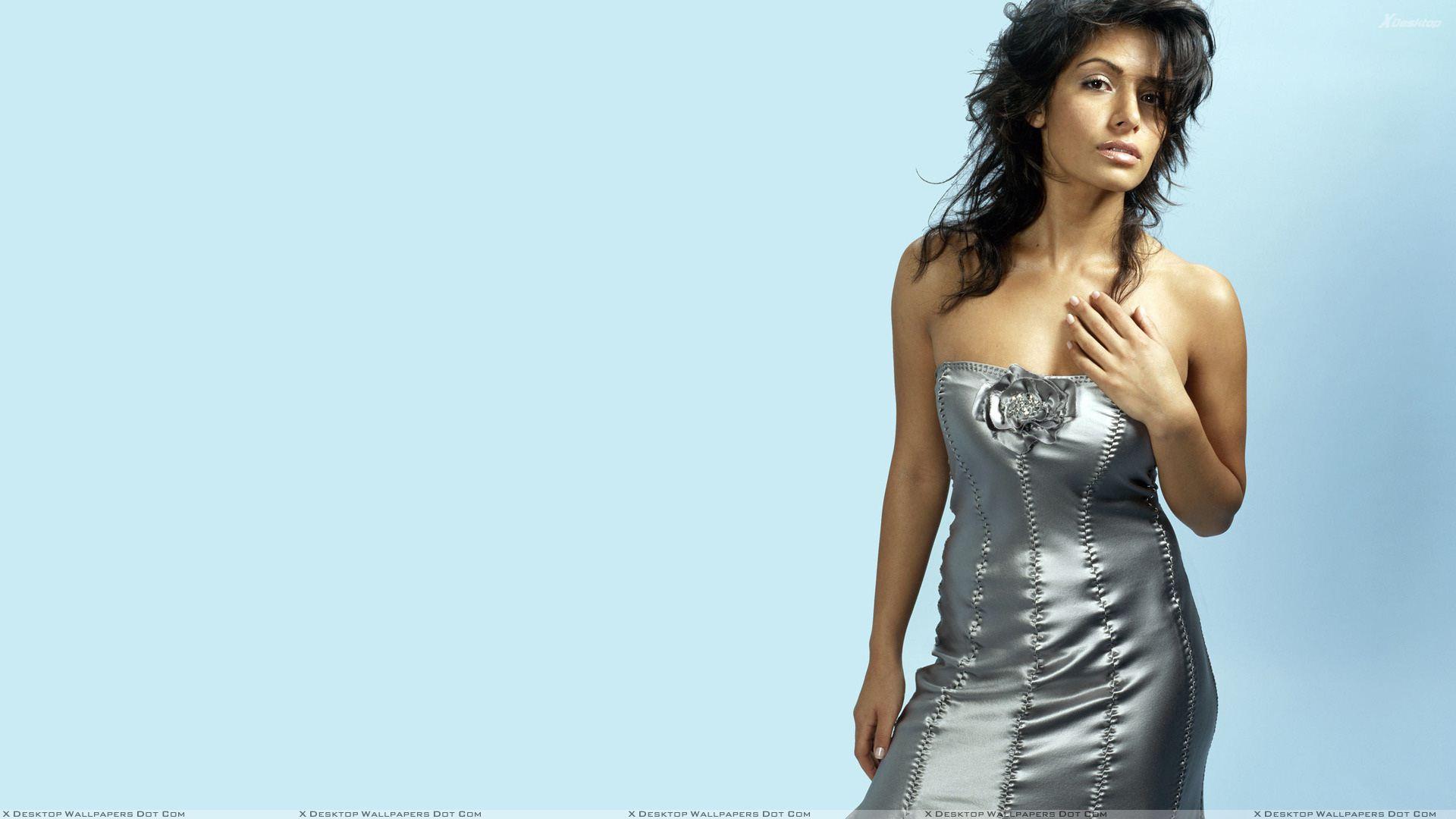 Sarah Shahi HD Background