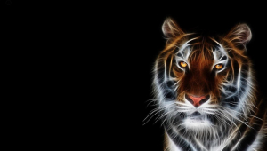 Tiger Free Download