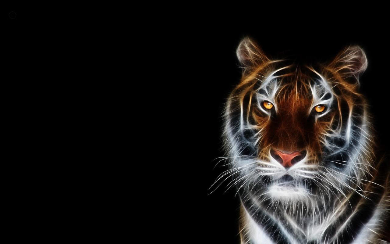 Tiger Free Download