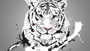Tiger Wallpapers And Backgrounds