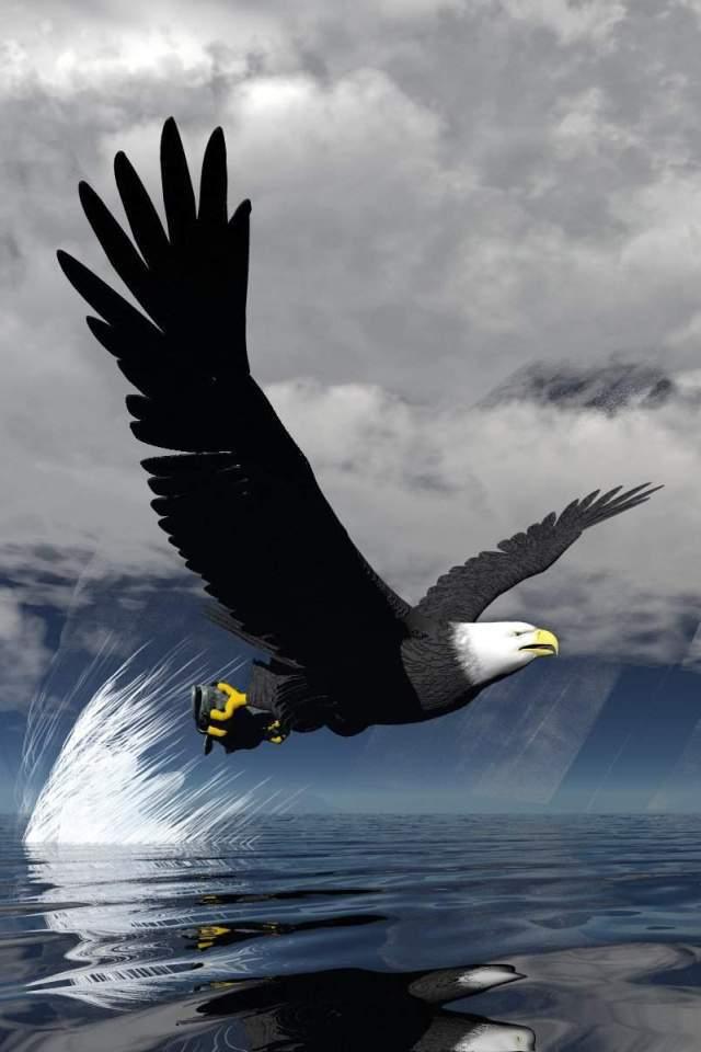Eagle Desktop For Iphone