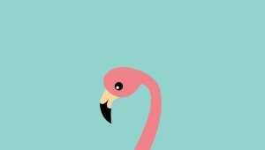 Flamingo Android Wallpapers