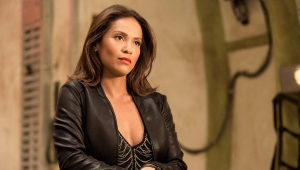 Lesley Ann Brandt High Definition Wallpapers
