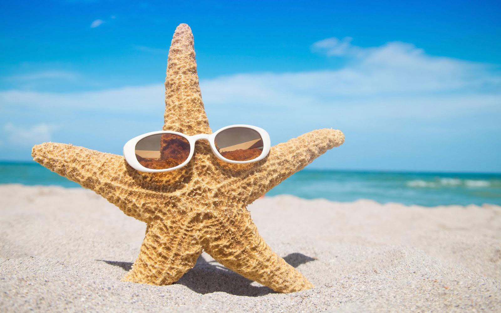 Starfish Photos
