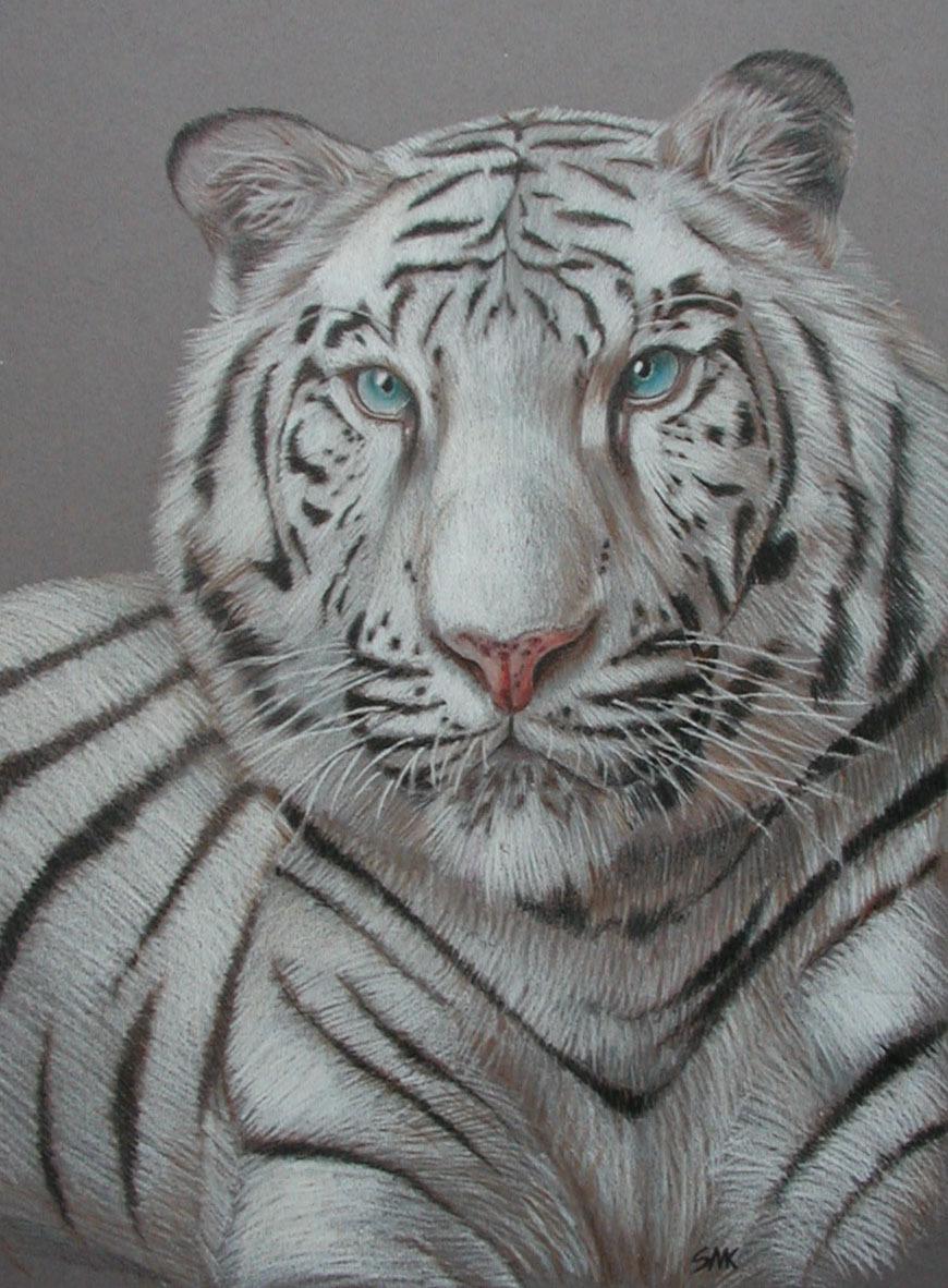 White Tiger For Smartphone