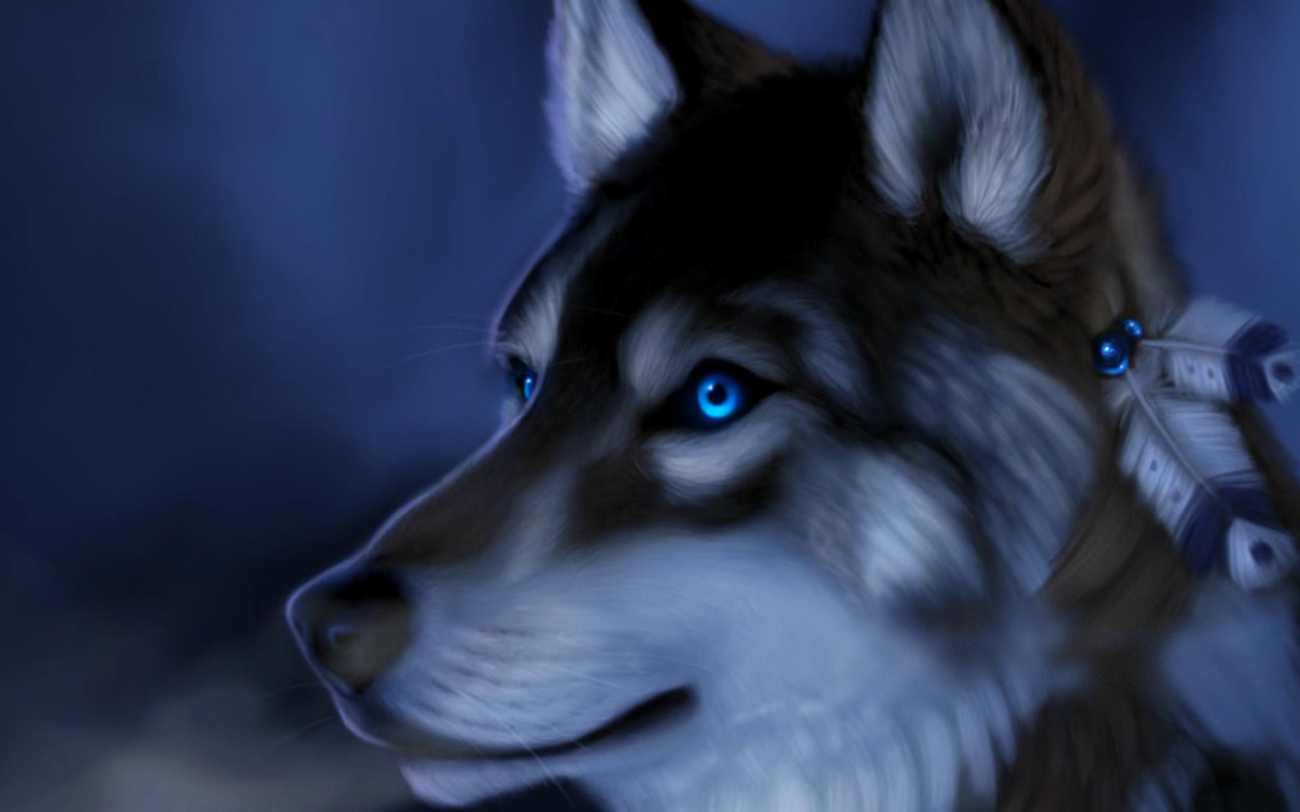 Wolf Eyes Photo