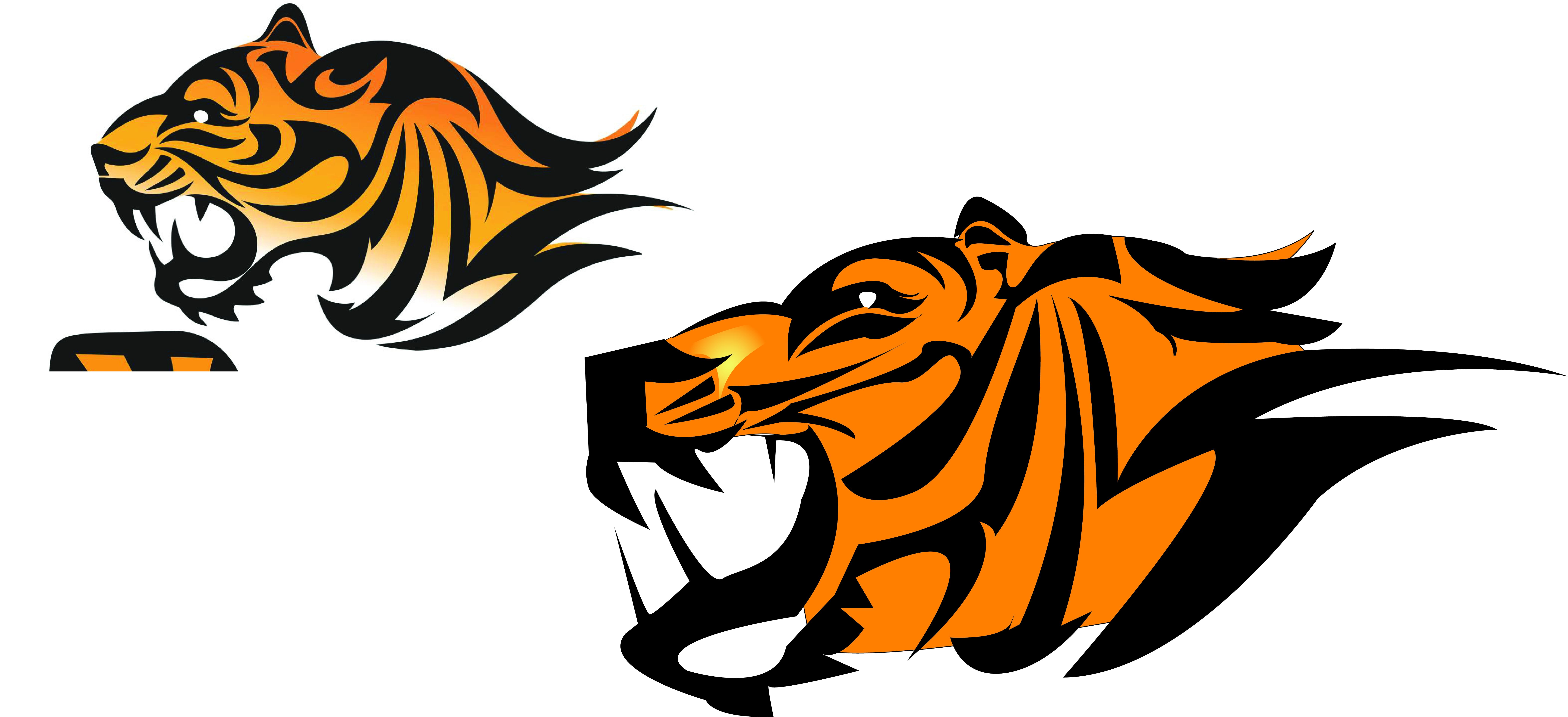 Tiger Illustrator Designs