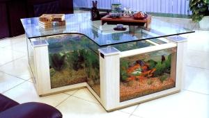 Aquarium Coffee Table Interesting Form