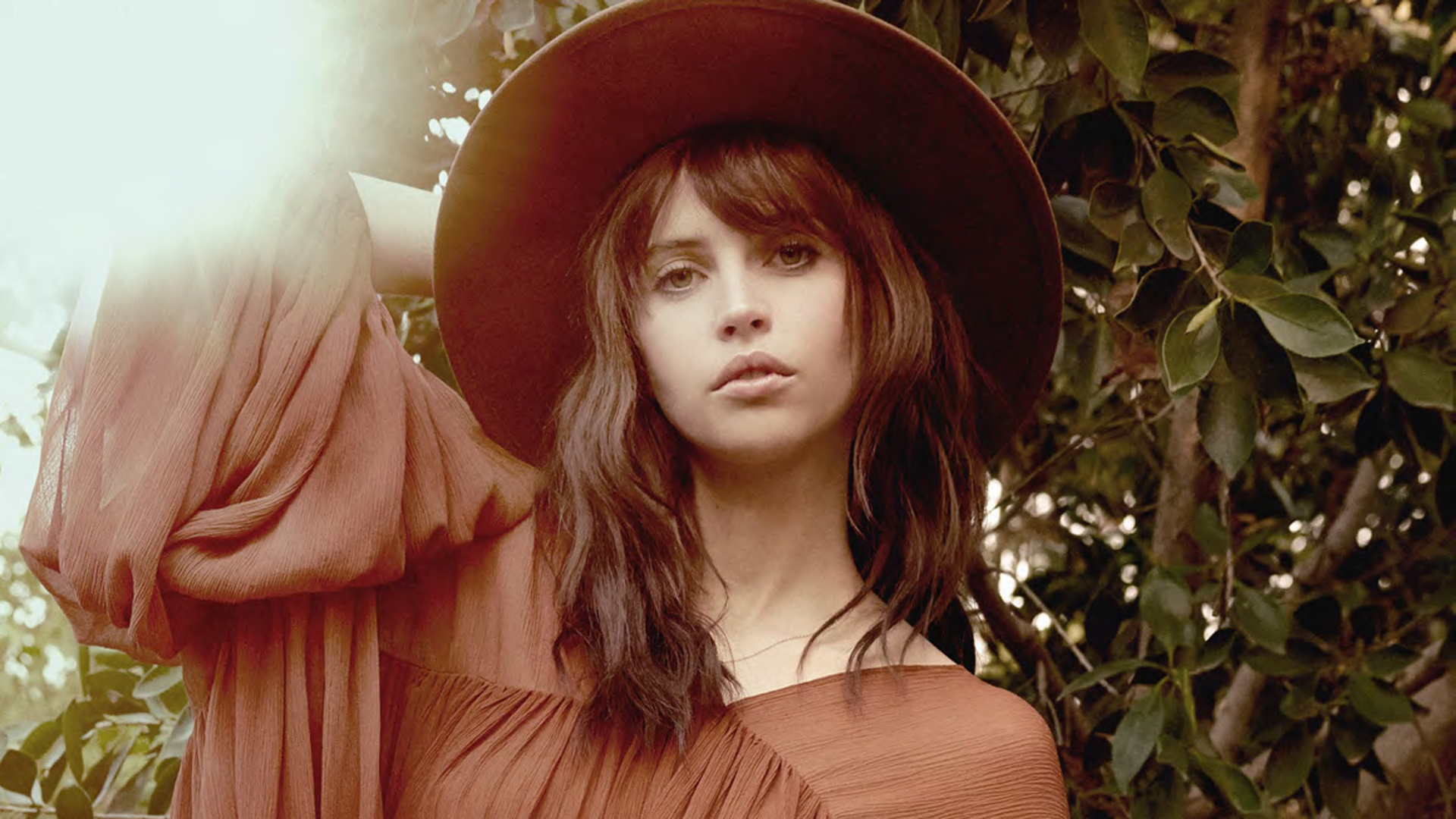Felicity Jones Wallpapers And Backgrounds