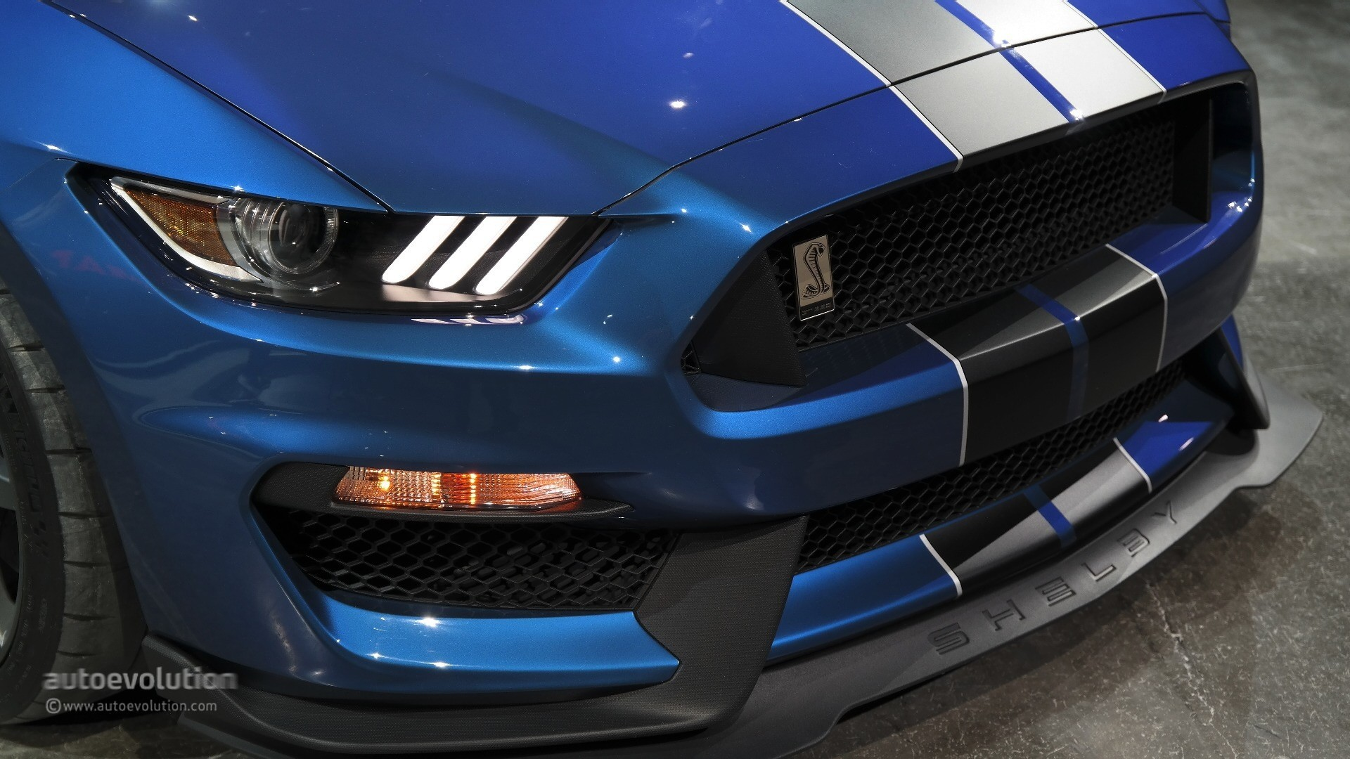 Ford Mustang Shelby GT350 2016 Images