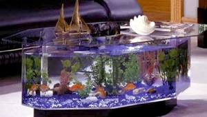 Hexagonal Aquarium Coffee Table
