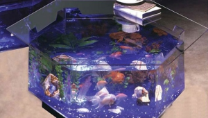 Hexagonal Fish Tank Coffee Table
