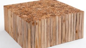 Rustic Organic Coffee Table