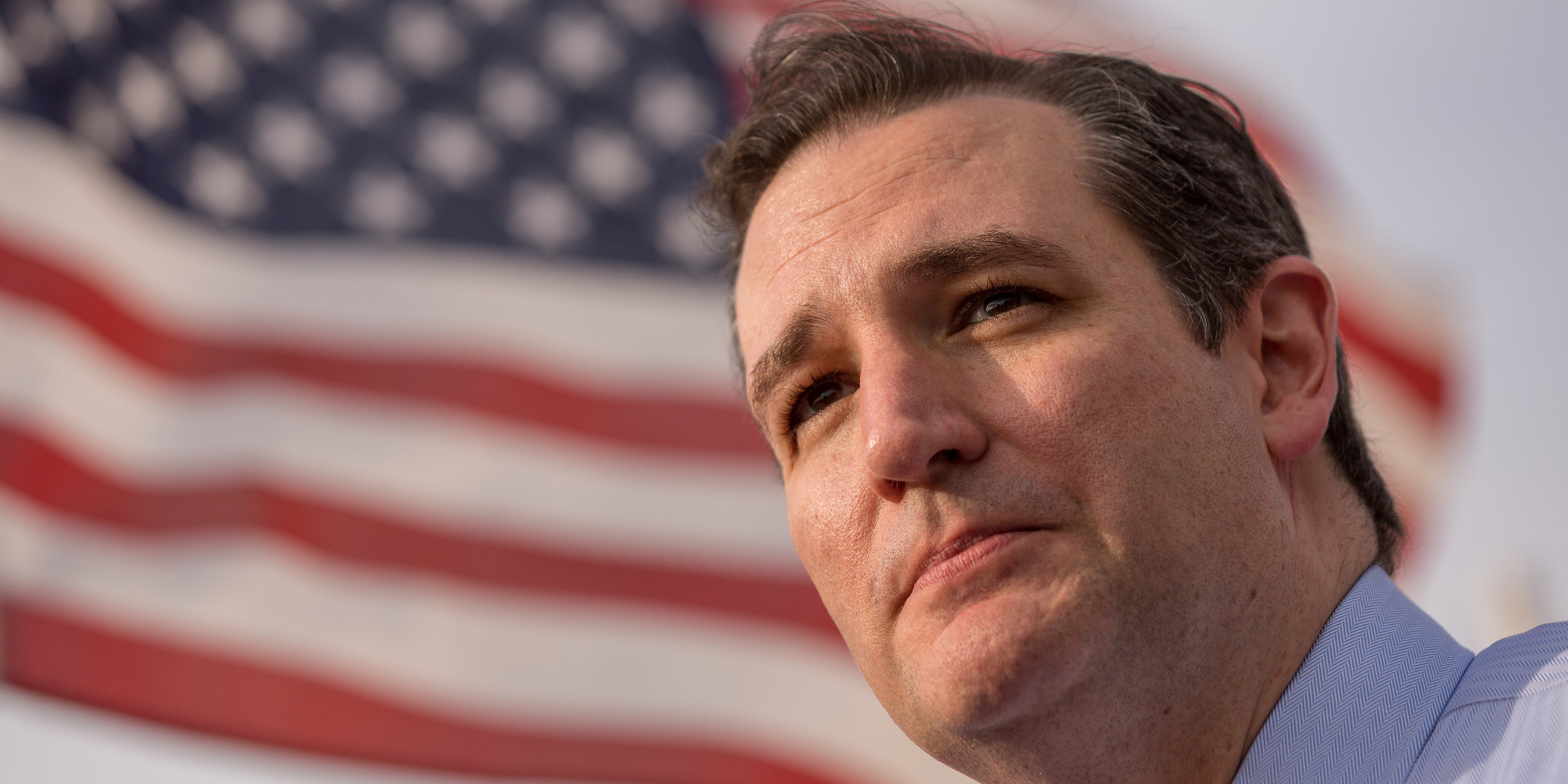 Ted Cruz HD Wallpaper