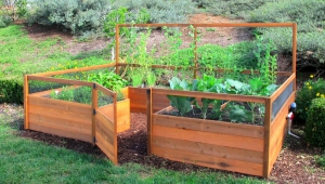 Cedar Raised Garden Beds