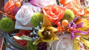 Colorful Bridal Flower