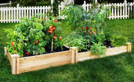 Inexpensive Raised Garden Beds