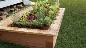 Raised Garden Beds Nz