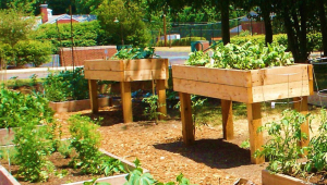 Raised Garden Beds On Legs