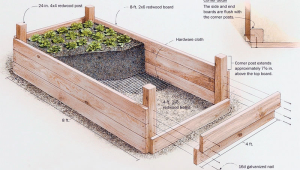 Raised Garden Beds Uk