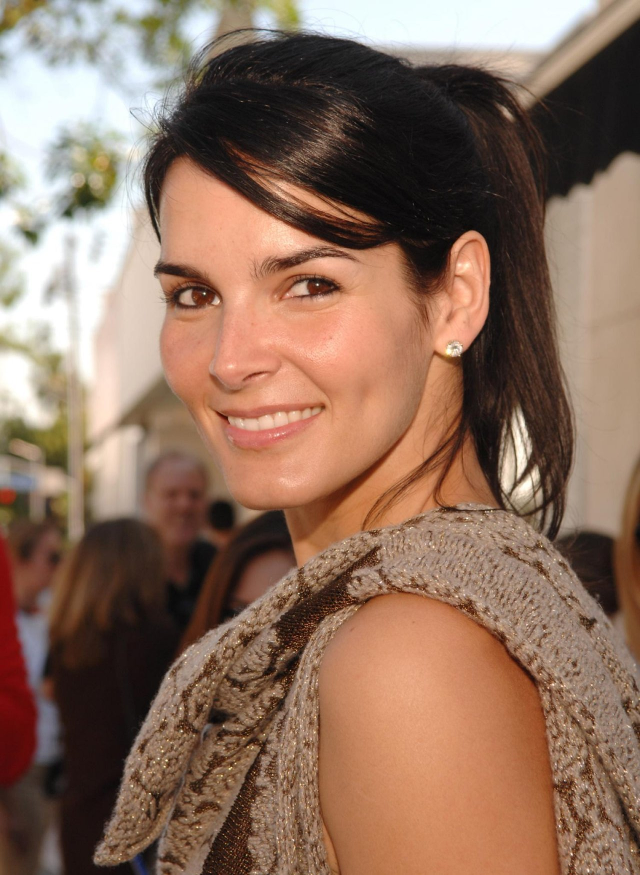 Angie Harmon High Quality Wallpapers For Iphone