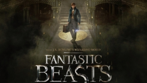 Fantastic Beasts And Where To Find Them Images