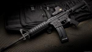 M16 Images