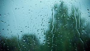 Rain Widescreen