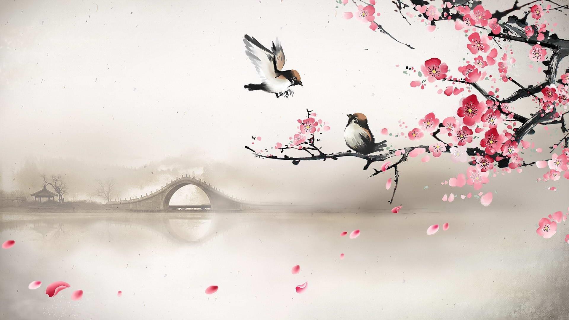 Sakura Backgrounds