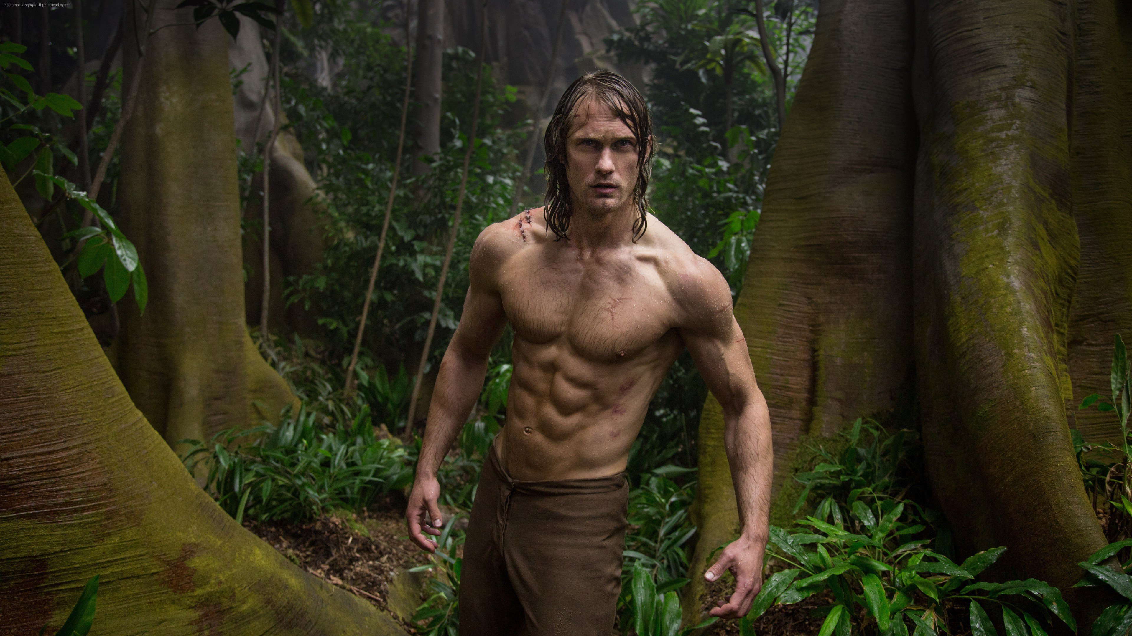 The Legend Of Tarzan Photos