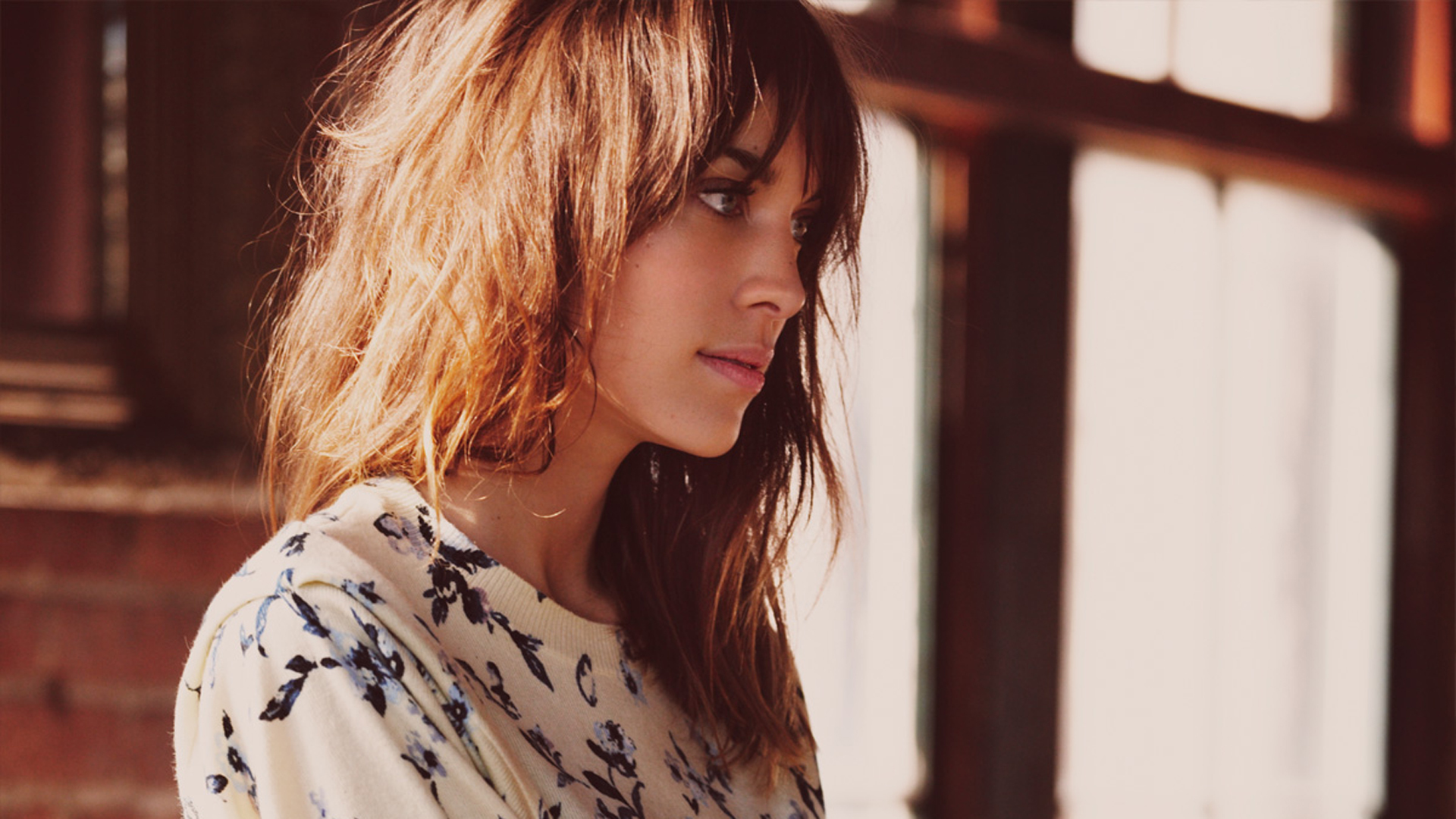 Alexa Chung Download Free Backgrounds HD