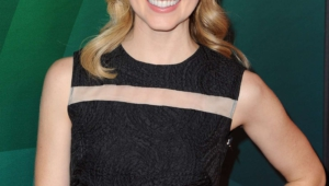 Amanda Schull High Definition