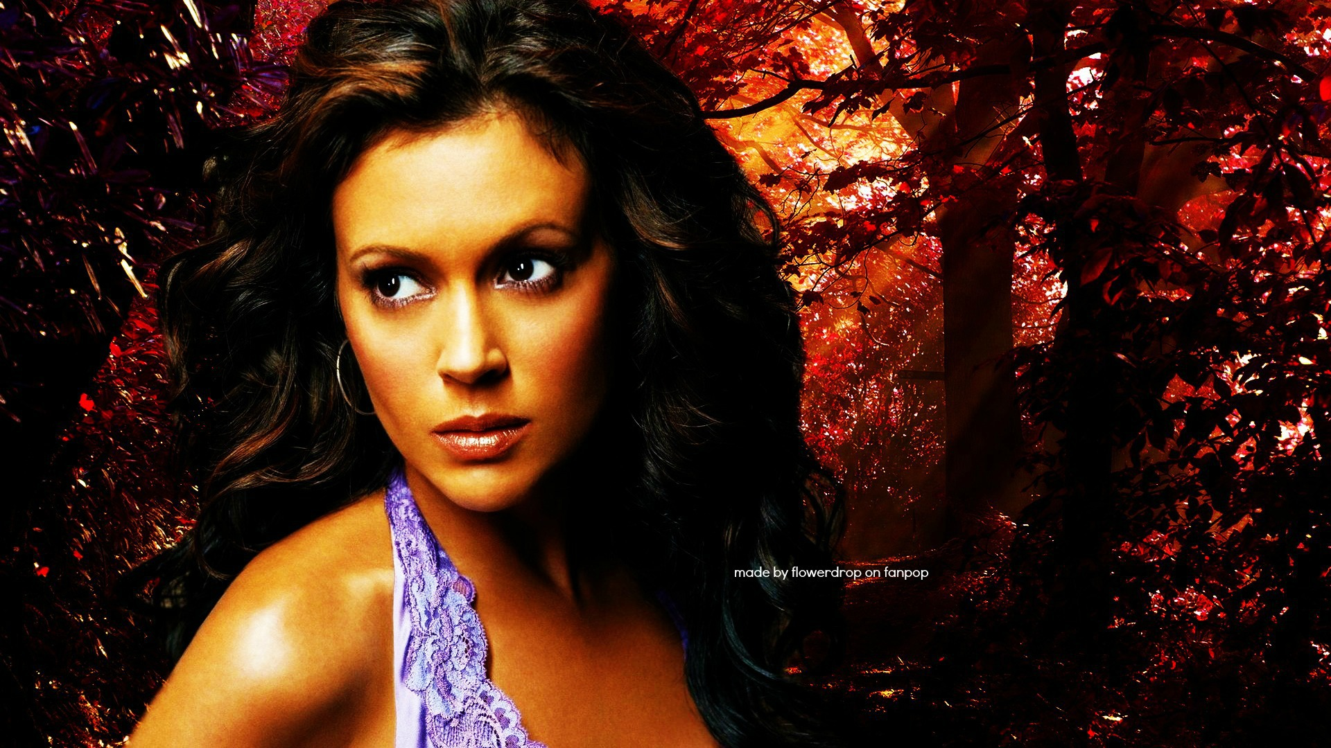 Charmed Free Wallpapers5