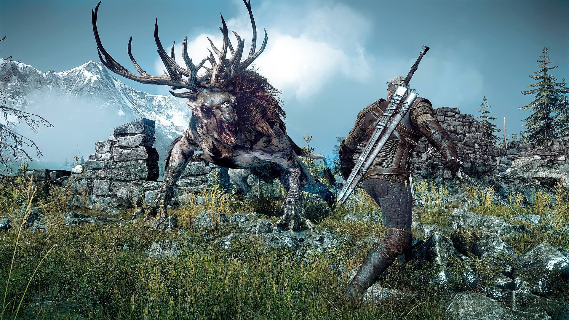 The Witcher 3 Wild Hunt Photos