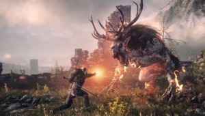 The Witcher 3 Wild Hunt Pictures