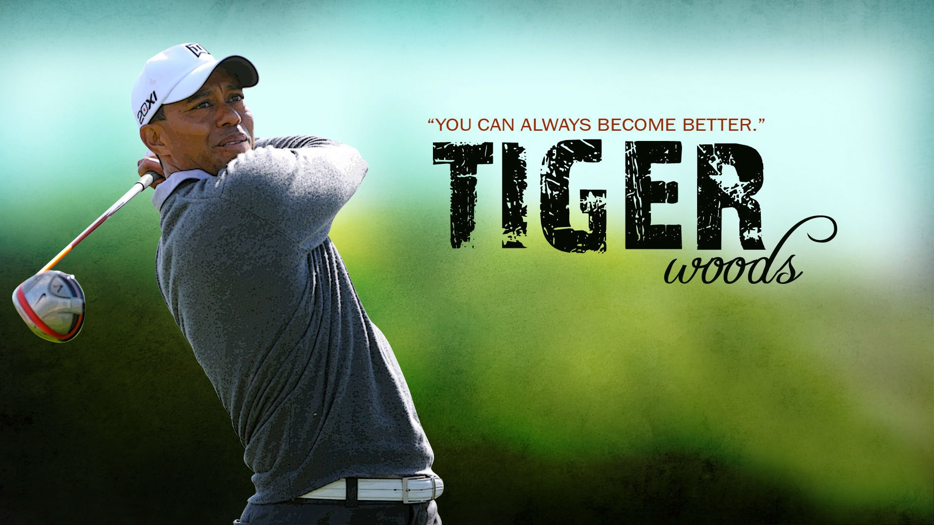 Tiger Woods HD