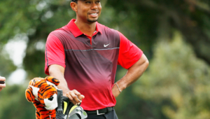 Tiger Woods For Desktop