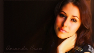 Amanda Crew HD Wallpaper