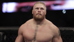 Brock Lesnar HD