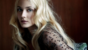 Diane Kruger For Desktop