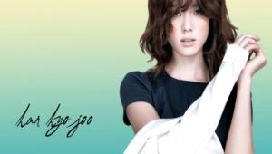 Han Hyo Joo Background
