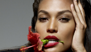 Joan Smalls Desktop
