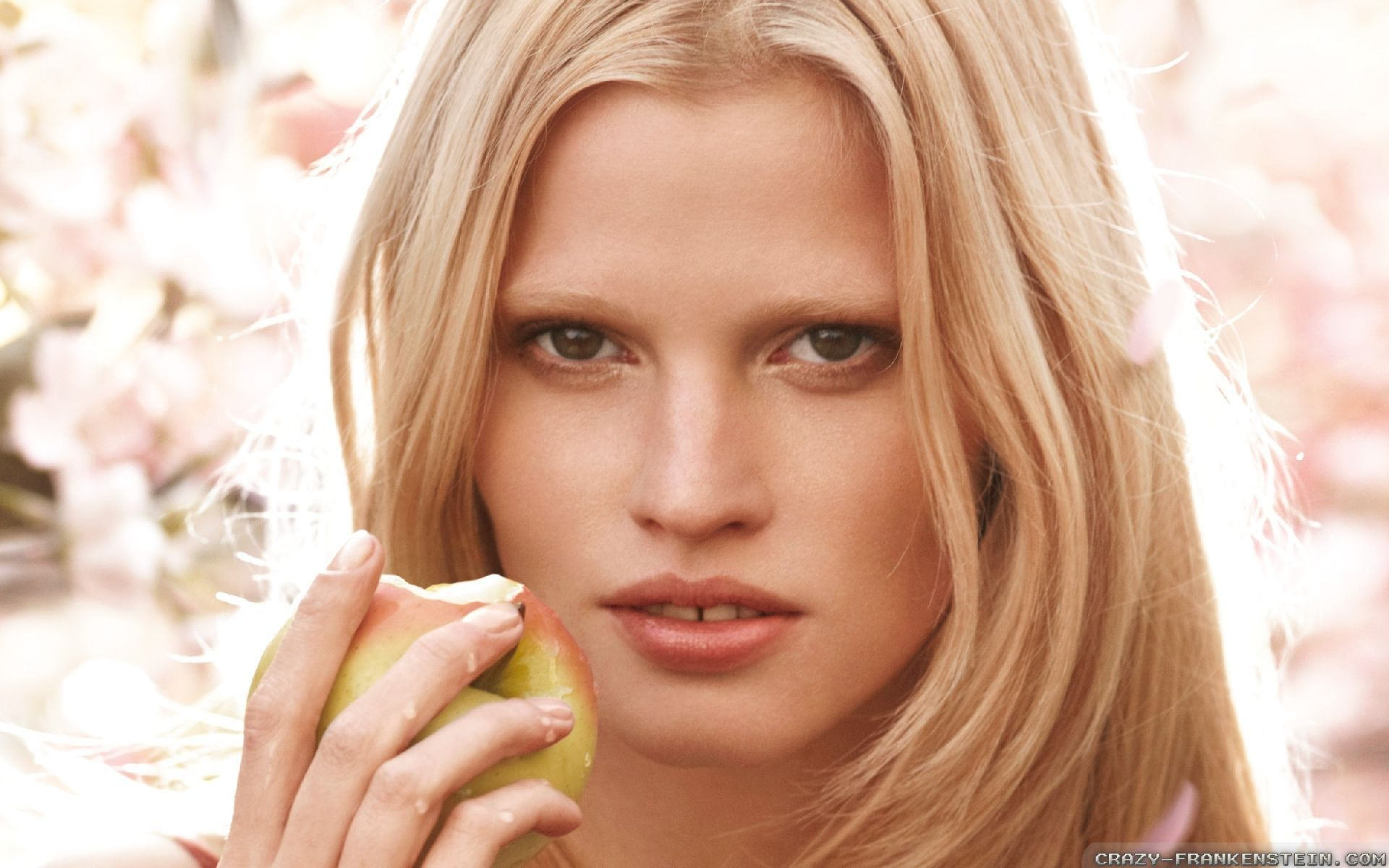Lara Stone Photos