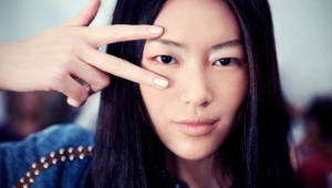 Liu Wen Background
