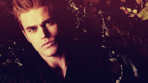 Paul Wesley Pictures