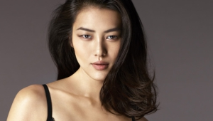 Pictures Of Liu Wen