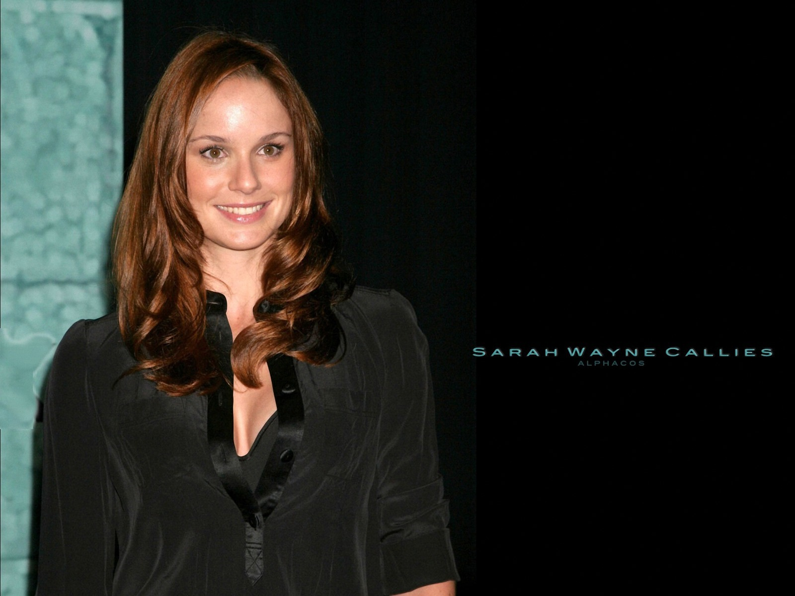 Sarah Wayne Callies Photos